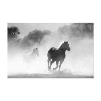Horses running black and white beautiful scenery canvas print