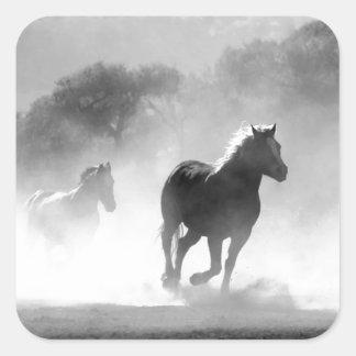 Horses running black and white beautiful scenery square sticker