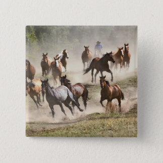 Horses running during roundup, Montana 15 Cm Square Badge