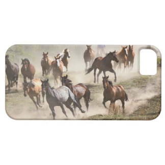 Horses running during roundup, Montana Case For The iPhone 5