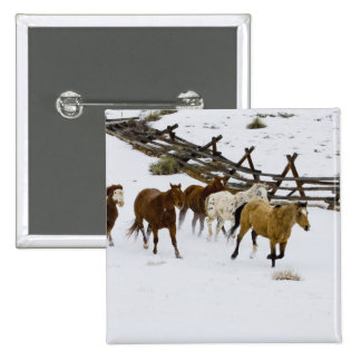Horses Running in Snow 15 Cm Square Badge