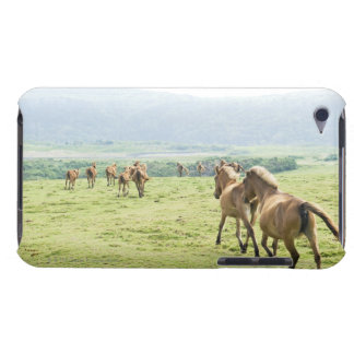 Horses running iPod touch case