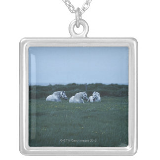 Horses sitting in field, Perci, Quebec, Canada Silver Plated Necklace
