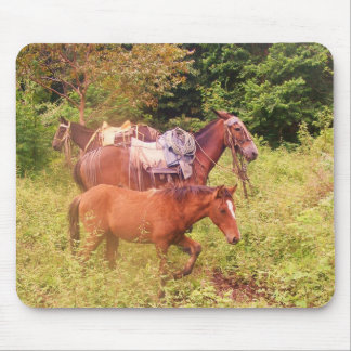 horses south america mouse mat