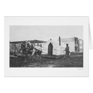 Horses Tent Anchorage 1916 Card