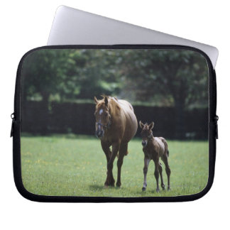 Horses - Thoroughbred, Mare And Foal, Laptop Sleeve