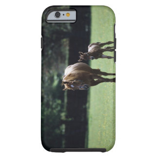 Horses - Thoroughbred, Mare And Foal, Tough iPhone 6 Case