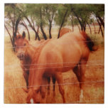 Horses Tiles