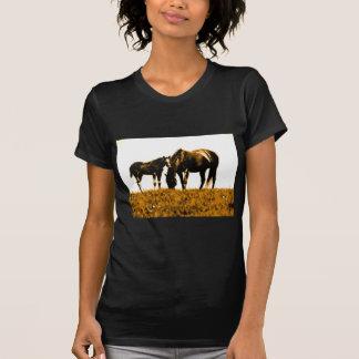 Horses Tshirt