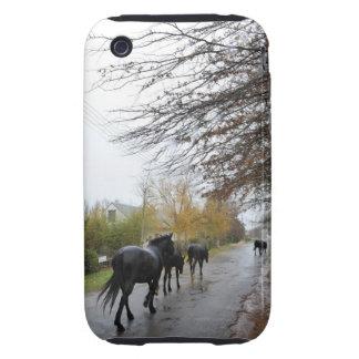 Horses walking down Oak Street in rain, Greyton, iPhone 3 Tough Cover