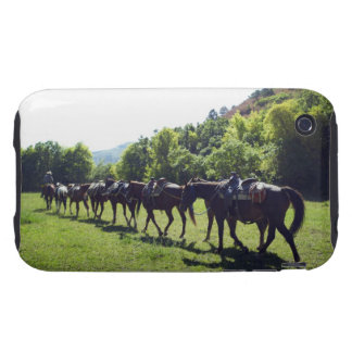 Horses walking in a line tough iPhone 3 cases