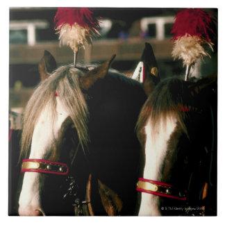 Horses with headdresses tile