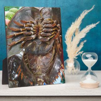 Horseshoe Crab ... Thai Asian Street Food Plaque