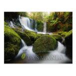 Horseshoe Falls, Mt Field National Park, Tasmania Postcards