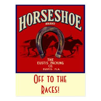 Horseshoe Racer Postcard
