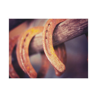 Horseshoes on Barn Wood Cowboy Country Western Stretched Canvas Print