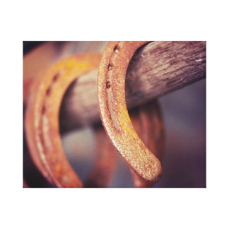 Horseshoes on Barn Wood Cowboy Country Western Stretched Canvas Prints