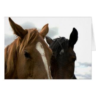 horsey love card