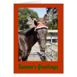 Horsey Season's Greetings Greeting Card