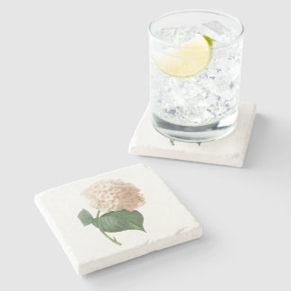 hortensia(Hydrangea sp.) by Redouté Stone Coaster