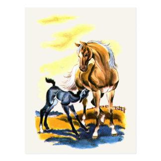 Hosre & Foal Postcard