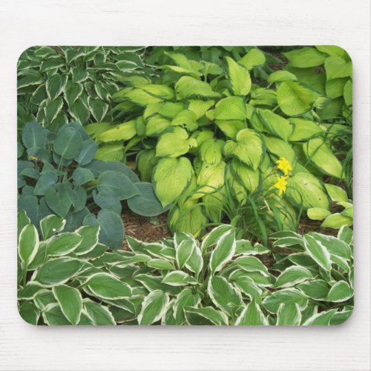 Hosta Mouse Mat