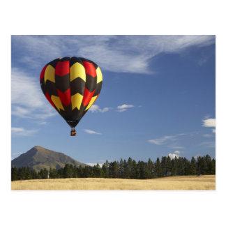 Hot Air Balloon near Wanaka, South Island, New Postcard