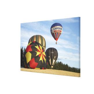 Hot Air Balloons near Wanaka, South Island, New Canvas Prints