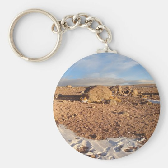 Hot And Cold Key Ring