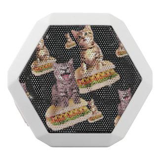 hot dog cat invasion
