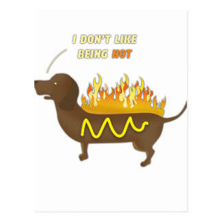 Hot Dog Funny Joke Slogan Postcard