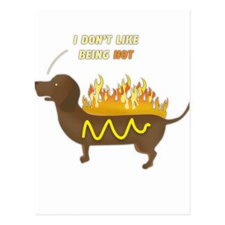 Hot Dog Funny Joke Slogan Postcard