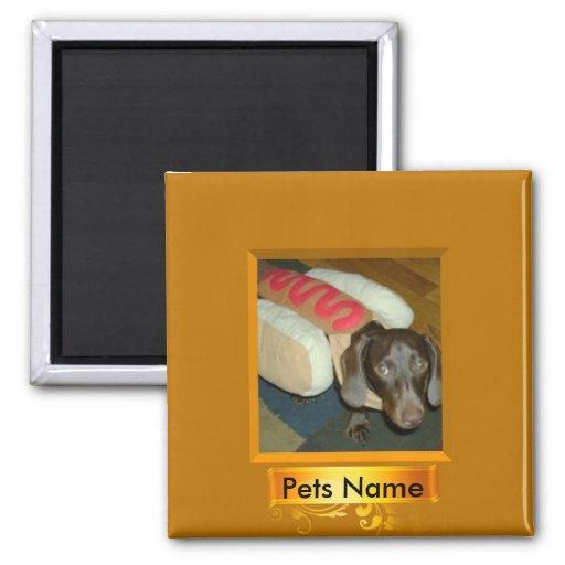 Hot Dog Pet Refrig Magnet