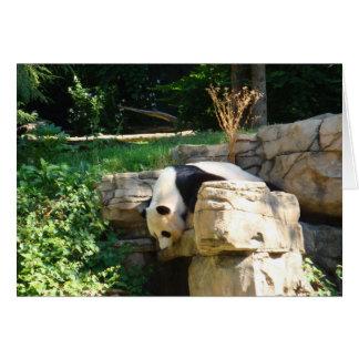 Hot Panda Greeting Card