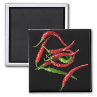 Hot Pepper 1 Fridge Magnets