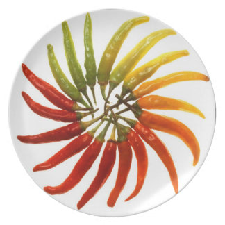 Hot Pepper Rainbow Party Plate