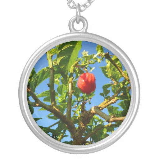hot peppers on plant sky back custom jewelry