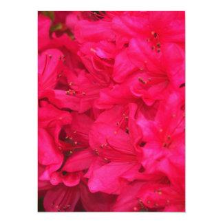 Hot Pink Azalea Flowers 14 Cm X 19 Cm Invitation Card