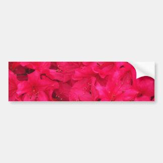 Hot Pink Azalea Flowers Bumper Sticker