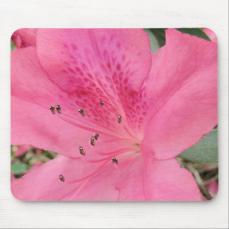 Hot Pink Azalea Mousepad