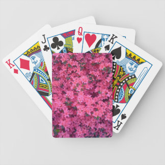 Hot Pink Azaleas Card Decks