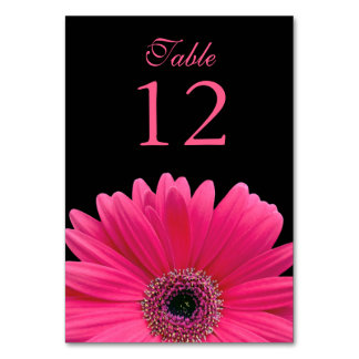 Hot Pink Black Gerber Daisy Wedding Table Card