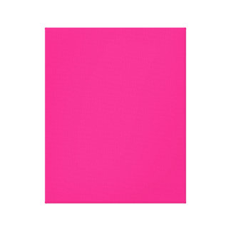 Hot Pink Bright Pink Canvas Prints