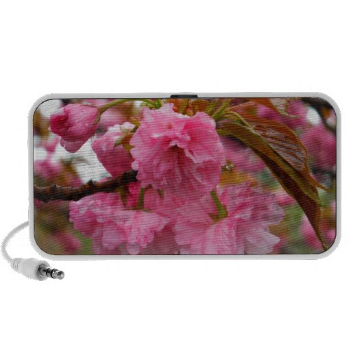 Hot Pink Cherry Blossom Flowers Mp3 Speakers
