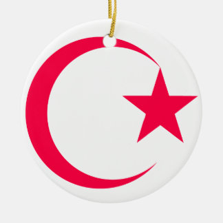Hot Pink  Crescent & Star.png Christmas Ornament