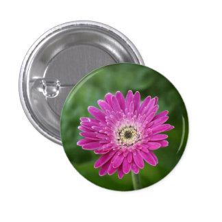 Hot pink daisy 3 cm round badge