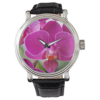 Hot Pink Dendrobium Orchid Flower - Floral Orchids Wrist Watches
