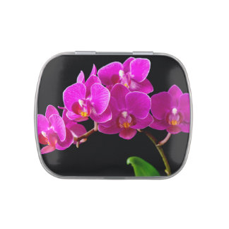 Hot Pink Dendrobium Orchid Flower Orchids Template Candy Tin