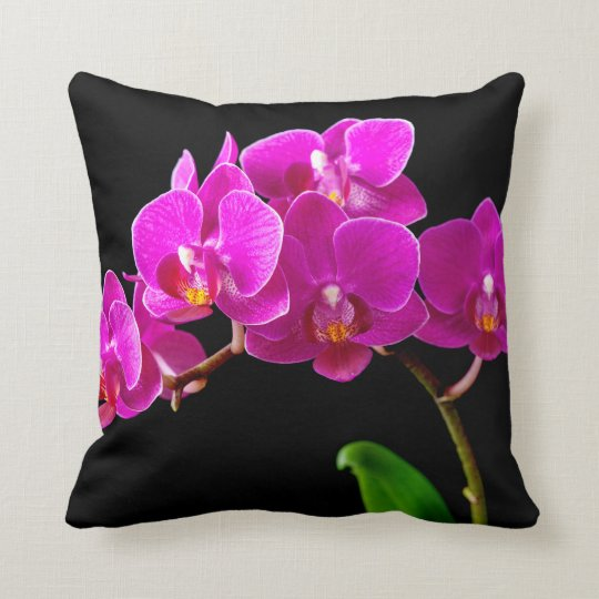 Hot Pink Dendrobium Orchid Flower Orchids Template Cushion