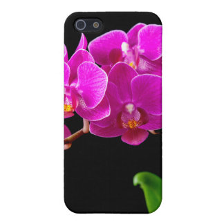 Hot Pink Dendrobium Orchid Flower Orchids Template iPhone 5 Cases